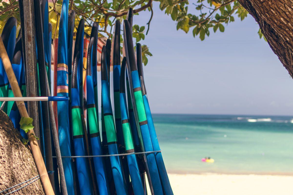 surf camp rodzaje
