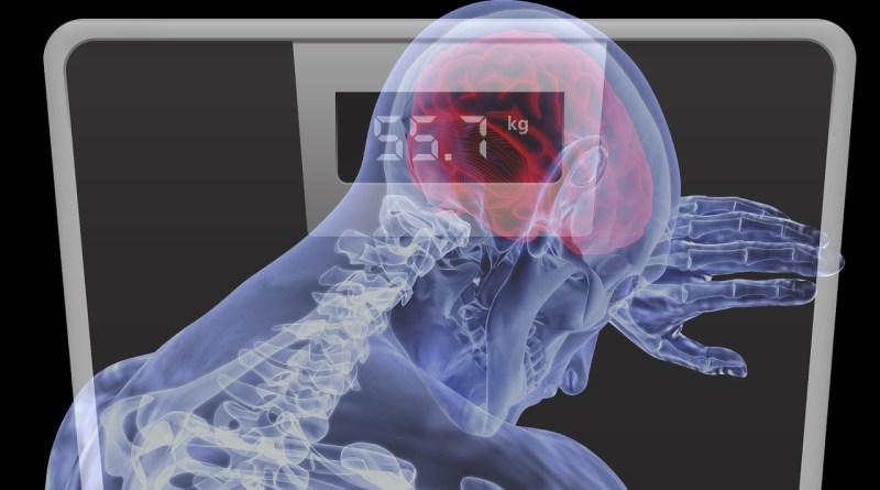 мозг весы