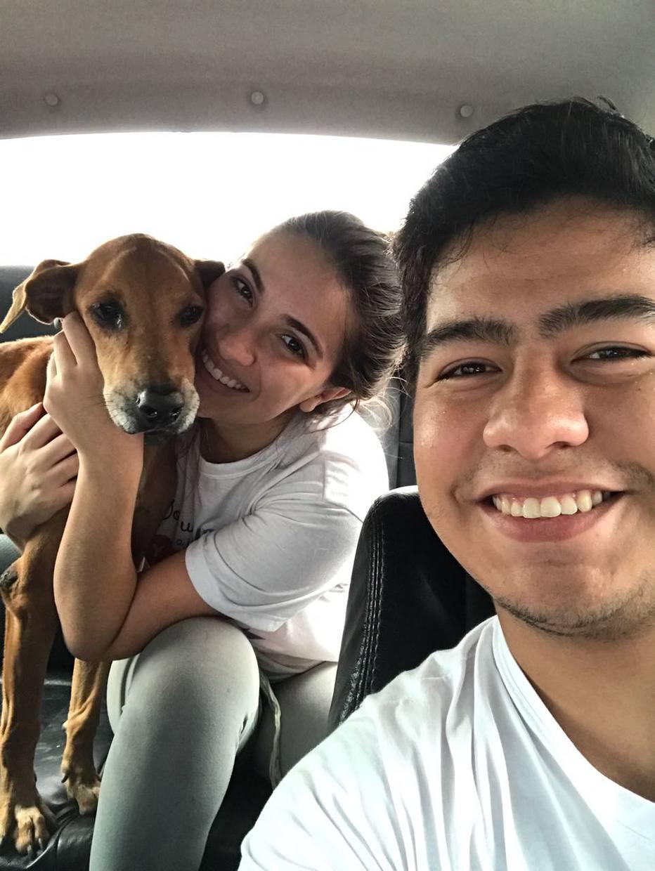 Cartório em Roraima começa a emitir 'certidão de nascimento' de animais de estimação