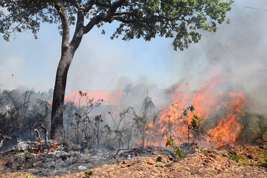 Bombeiros e brigadistas combatem incêndio na Serra do Estrondo, em Paraíso TO