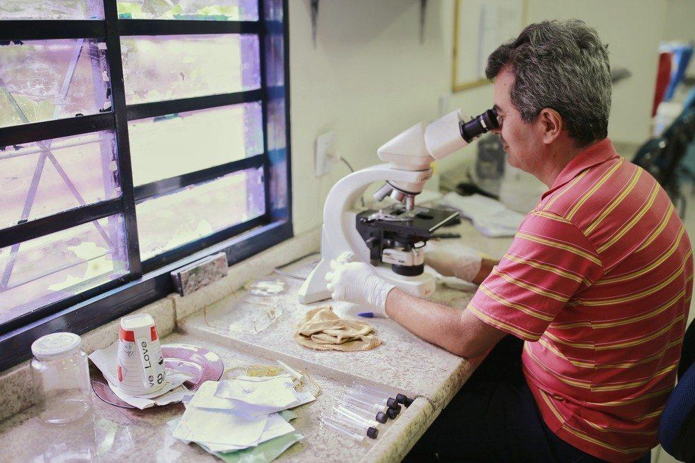 Em 11 meses, quase 5 mil casos de dengue são notificados em Palmas