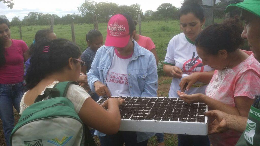 Produtores da Comunidade Vila São Miguel no município de Peixe participam do Curso Trabalhador na Olericultura