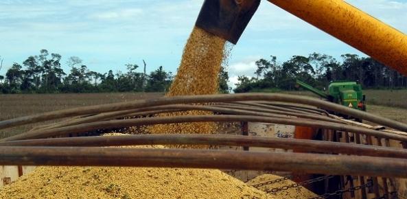 FAET informa que as regiões do MATOPIBA têm potencial produtivo 7,46% maior que no ciclo passado; estimativa é colher 12,1 milhões de toneladas de soja