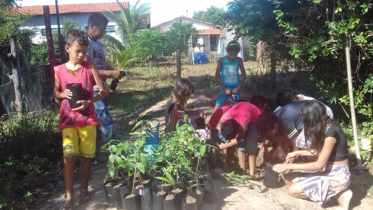 Escola Manoel Estevão trabalha recuperação das margens dos córregos de Sítio Novo