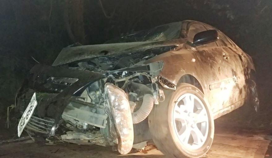 Carro atropela capivara na BR-153 em Cariri do Tocantins