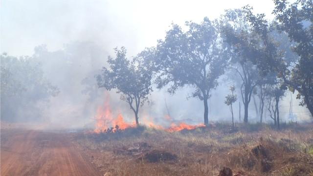 Incêndio atinge matagal ao lado do prédio da antiga Assembleia Legislativa