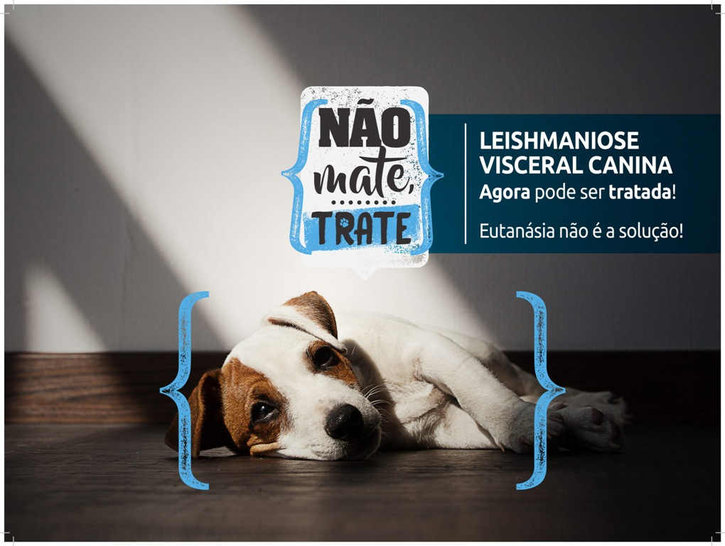 Segunda edição da campanha Não Mate Trate alerta sobre o avanço da doença nas grandes cidades
