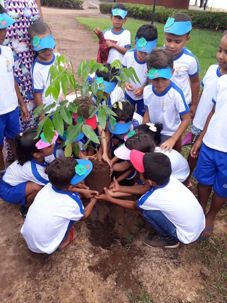 Prefeitura de Lagoa da Confusão comemora Dia da Árvore