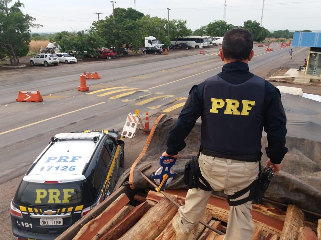 PRF flagra transporte ilegal de madeira rara