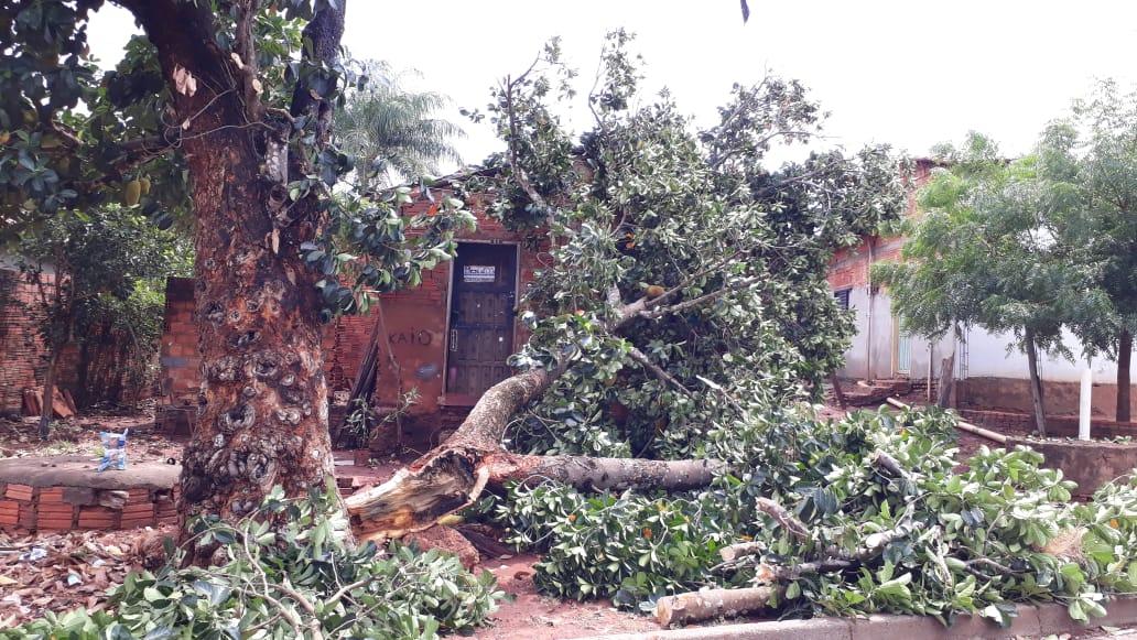 Defesa Civil alerta para prevenção de acidentes devido a chuvas atípicas