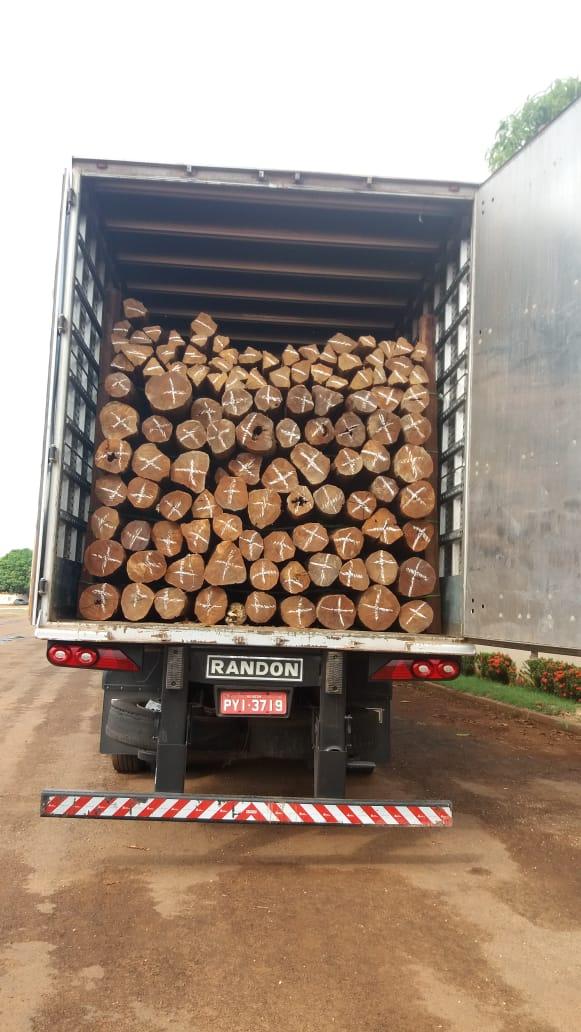 PM Ambiental multa motorista em mais de R$ 23 mil reais por transporte irregular de madeira em Augustinópolis