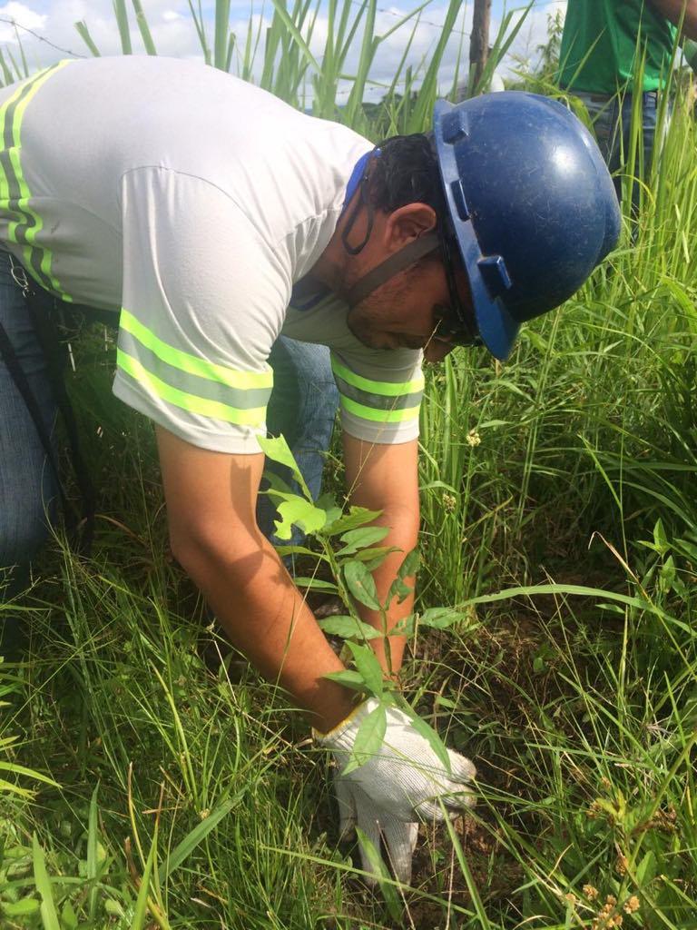 BRK Ambiental – Crianças de escola em Xambioá plantam 200 árvores às margens de rio