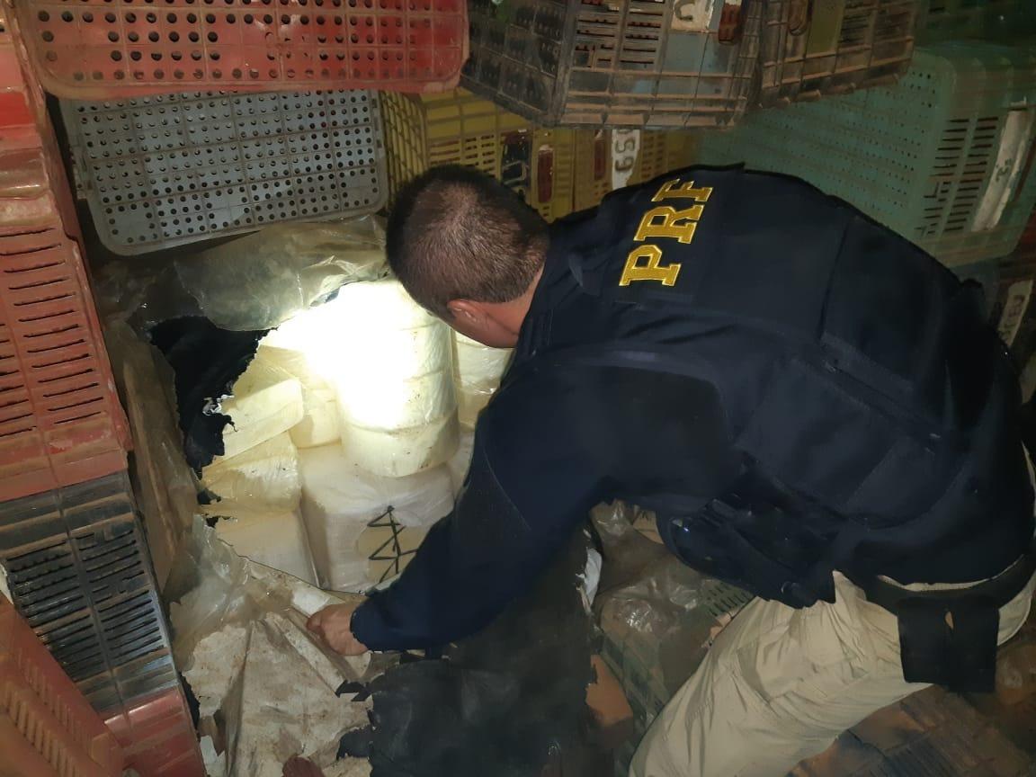 PRF apreende oito toneladas de queijo transportado ilegalmente em Aguiarnópolis
