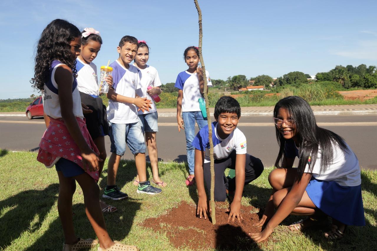 Arborização da Via Lago dá aula de meio ambiente a alunos da Rede Municipal