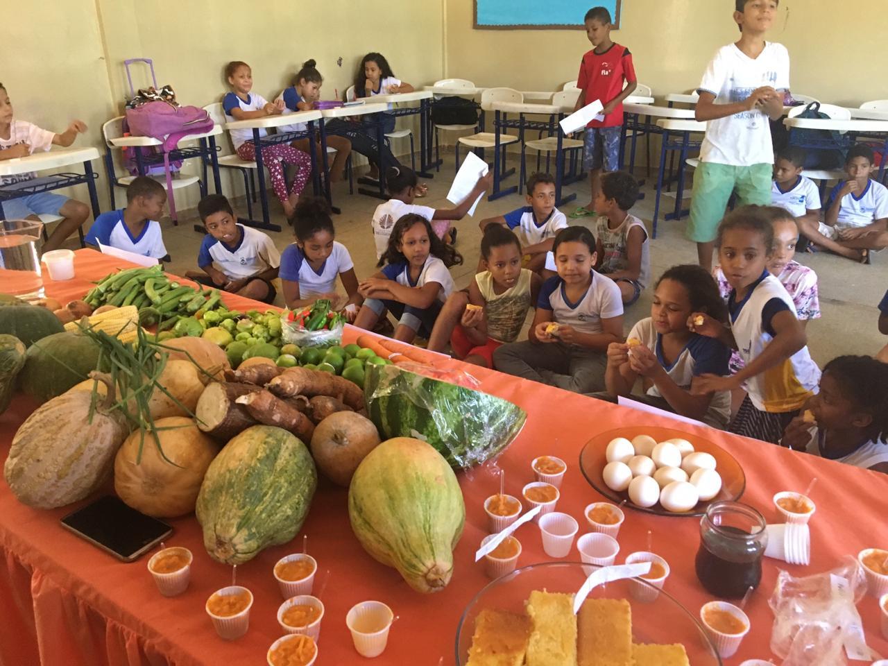 Projeto de escola de Porto Nacional incentiva consumo de alimentos orgânicos na comunidade