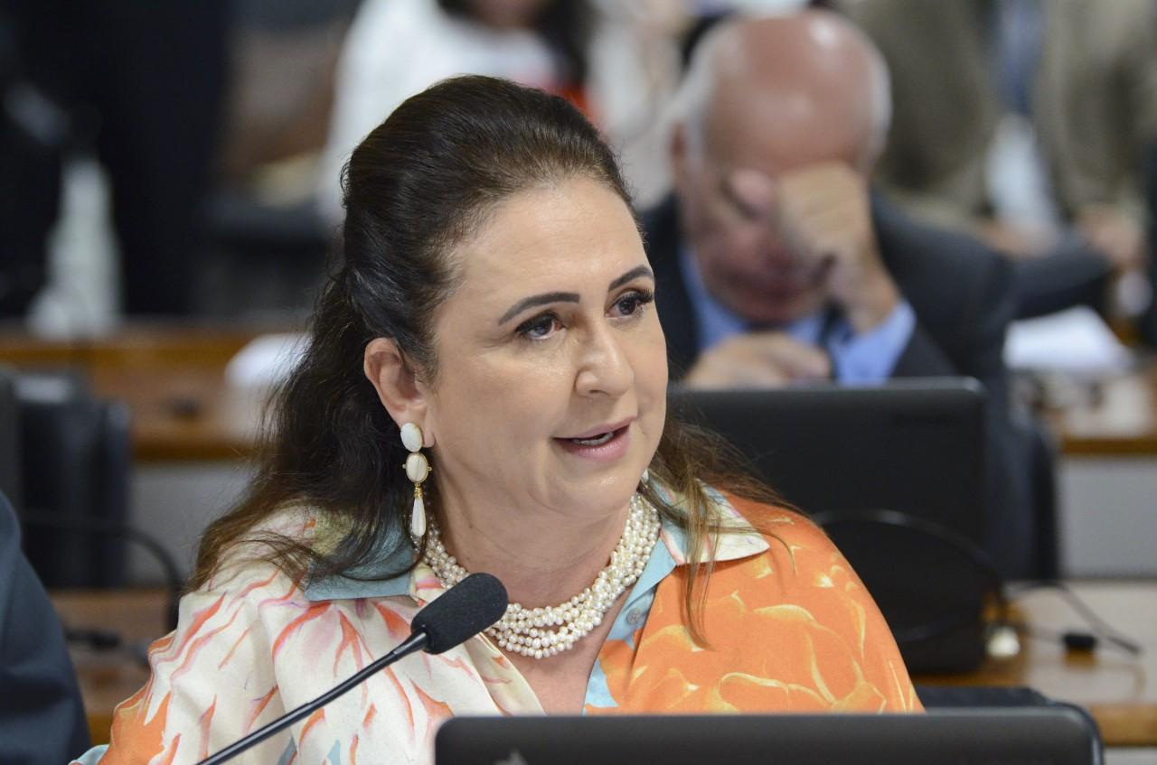 Avança relatório de Kátia Abreu que facilita regularização de dívidas de crédito rural