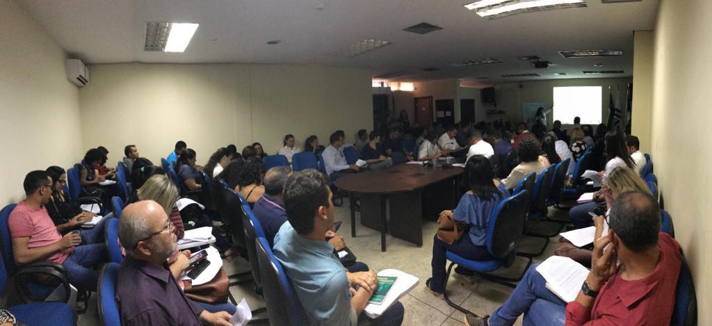 COSEMS-TO realiza 4ª Reunião Ordinária com Secretários de Saúde do Tocantins: 4ª CIB ocorreu no mesmo dia