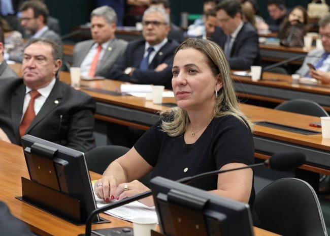 Dulce Miranda indica Palmas para sediar Seminário da Reforma Tributária