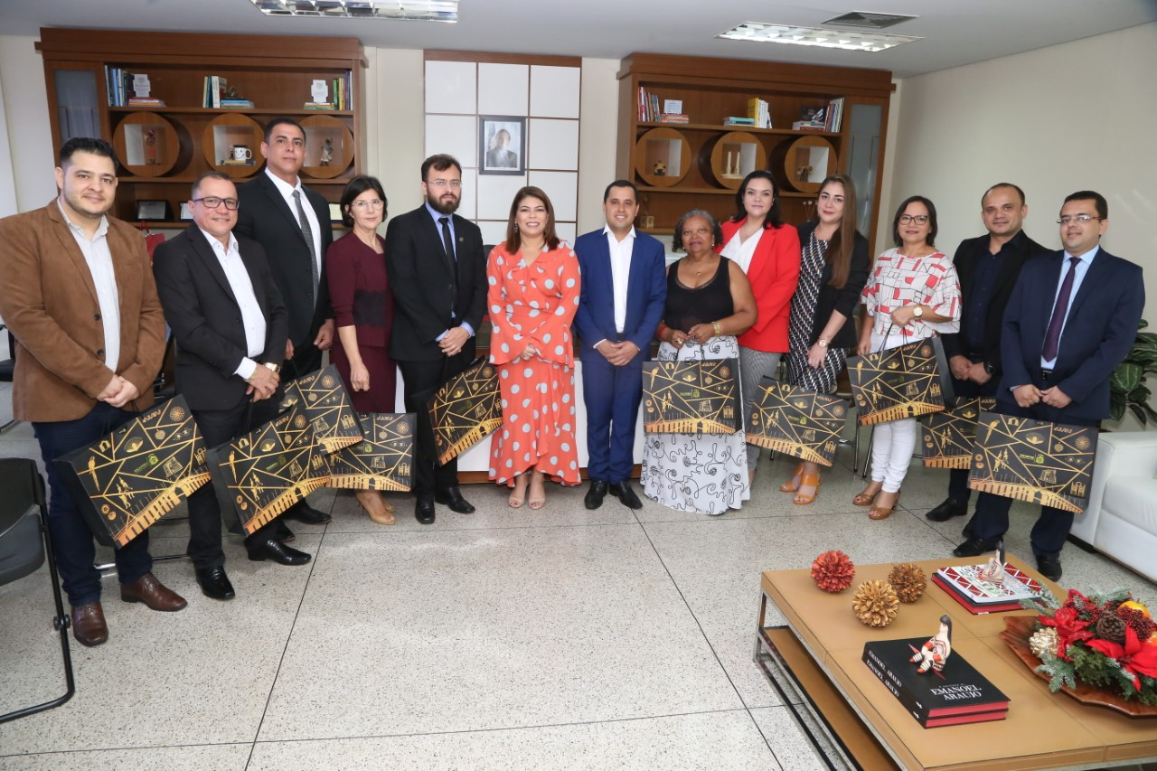 Nova composição do Conselho Estadual de Educação do Tocantins toma posse em Palmas