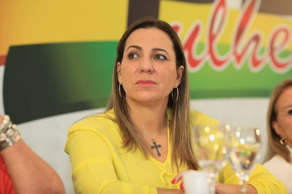 Dulce Miranda comemora publicação de lei que combate violência doméstica durante pandemia; parlamentar é coautora da matéria