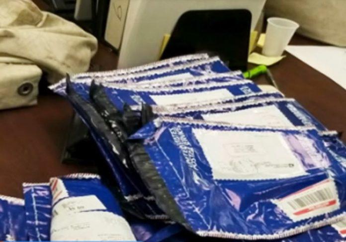 Família encontra 1 milhão de dólares na estrada e entrega à polícia em Virgínia, nos EUA; assista