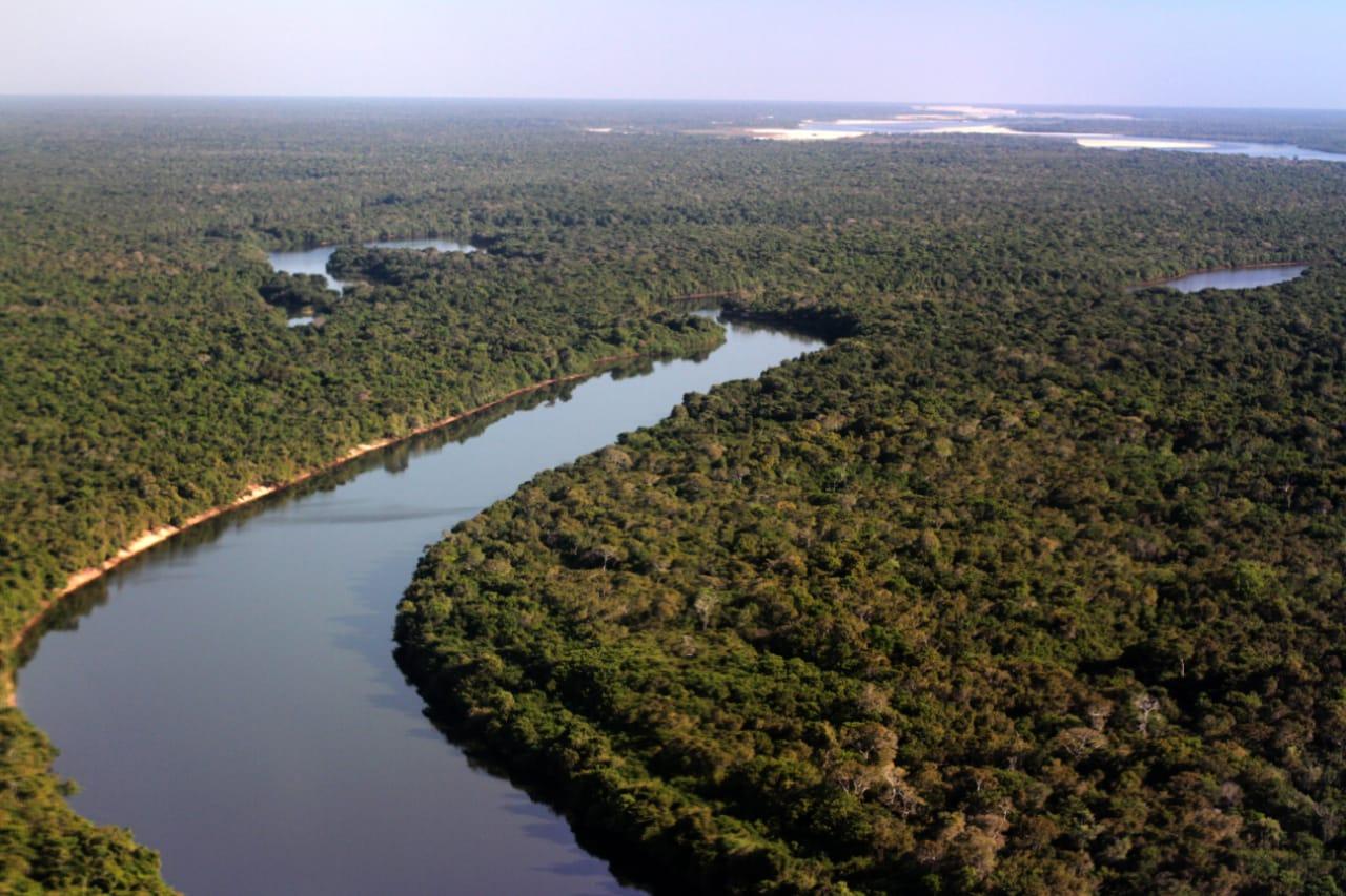 Dia Mundial do Meio Ambiente é celebrado pela Semarh com ações positivas de preservação ambiental