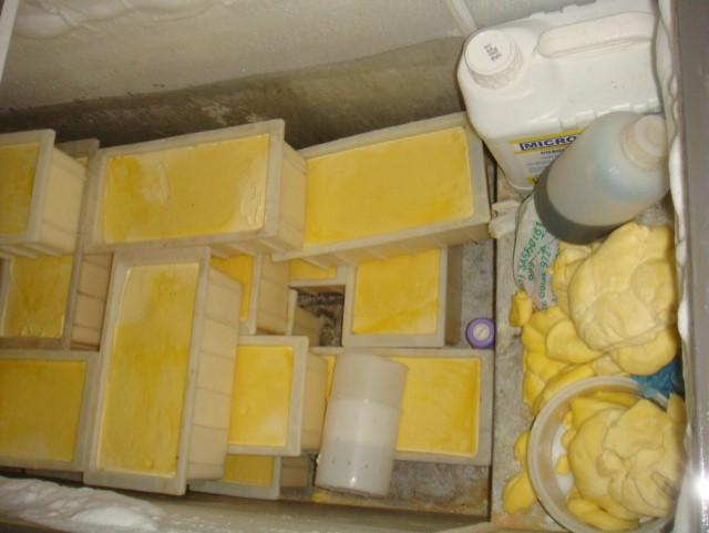 Adapec realiza operação de combate ao comércio clandestino de produtos lácteos em Augustinópolis