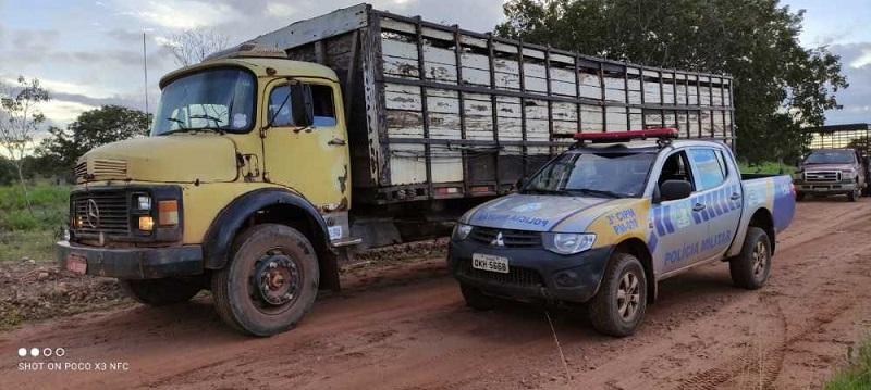 Polícia Militar localiza caminhão gaiola com animais furtados em Pau D'arco e prende suspeito