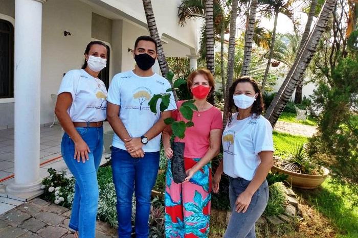 Prefeitura de Paraíso do Tocantins recebe doação de Ipê Amarelo