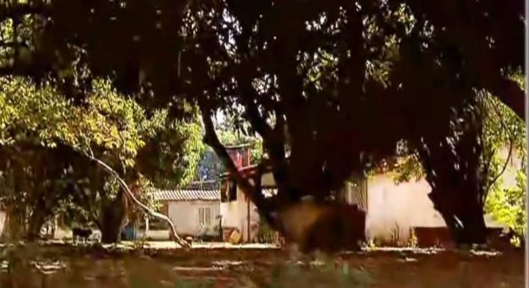 Caseiro de chácara em Girassol-GO troca tiros com homem na madrugada e acredita ser Lázaro
