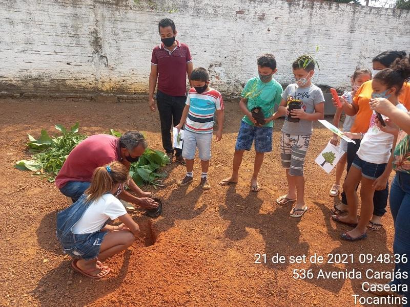 Prefeitura de Caseara, através da Secretaria de Meio Ambiente e Turismo, celebra Dia da Árvore com ações educativas