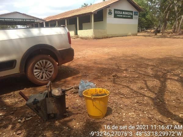 Brigada Ambiental e Defesa Civil de Dois Irmãos removem colmeias de abelhas de escola da zona rural