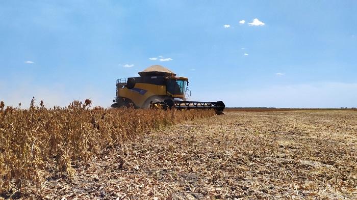Prazo para colheita de soja nas planícies tropicais encerra neste sábado, informa Adapec