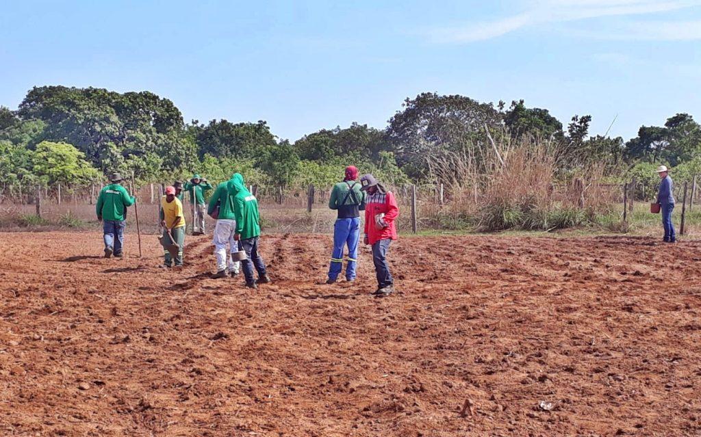 Brigadistas realizam plantio de milho no sistema mandala de produção em Pium
