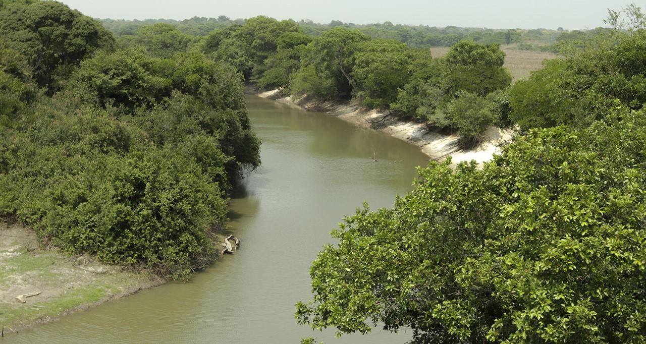 Evento #Falamunicípio discute a atuação do Comitê das Bacias Hidrográficas dos Rios Santo Antônio e Santa Tereza