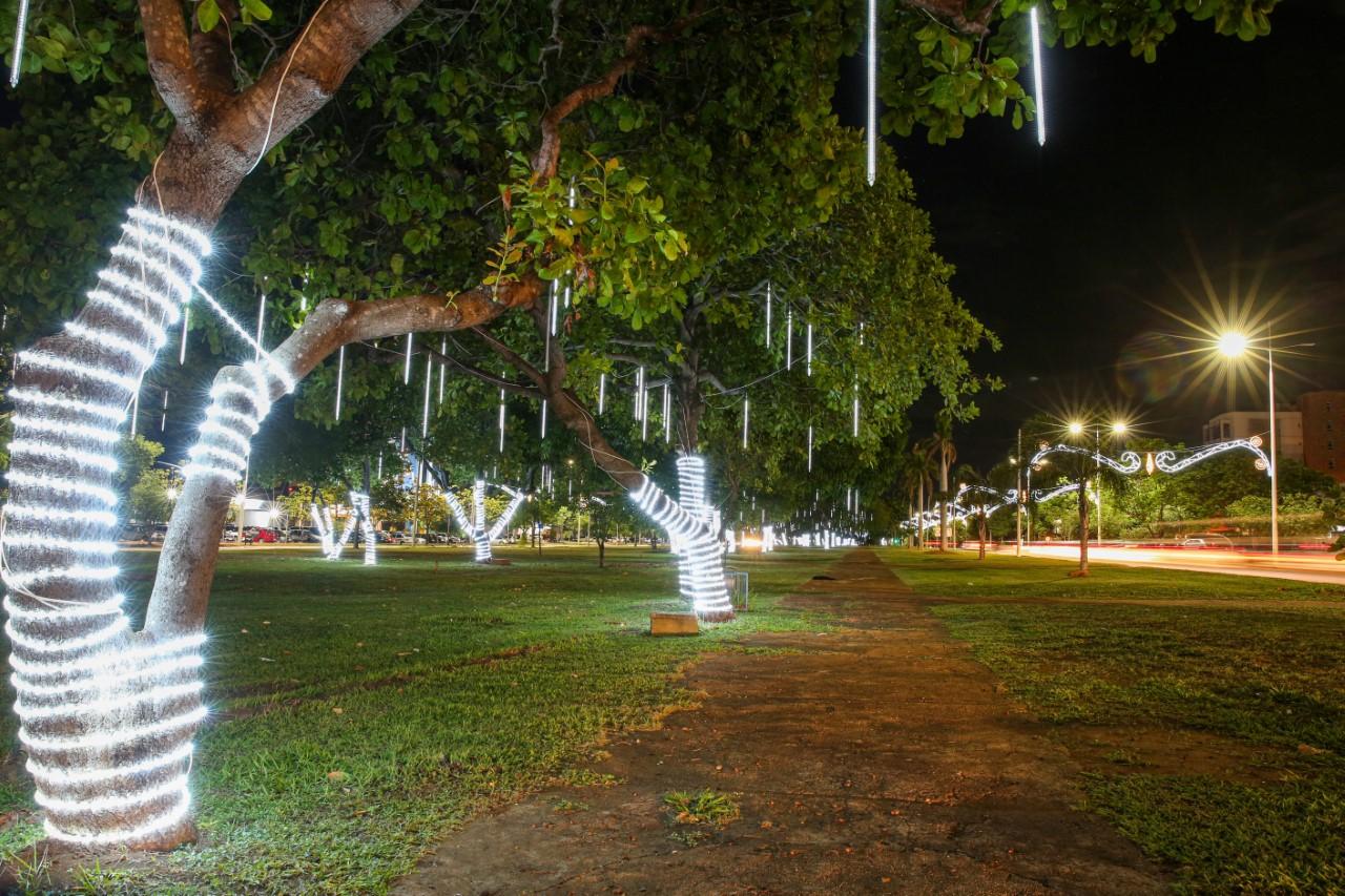 Prefeitura inicia instalação de túnel de luzes de Natal na Avenida Teotônio Segurado