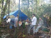 Campement selvatique