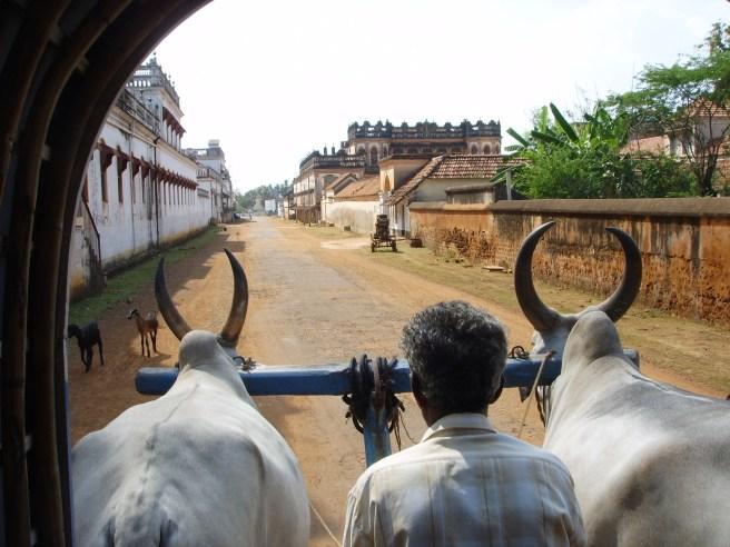 Dans la région du Chettinadu, au Tamil Nadu