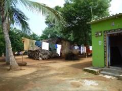 La jolie maison verte de Masi et Susila