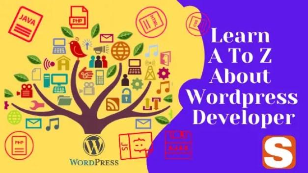 Learn All About WordPress Developer Details