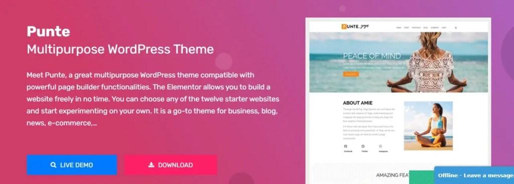 Punte WordPress Free Themes Foe Woocommerce and blog