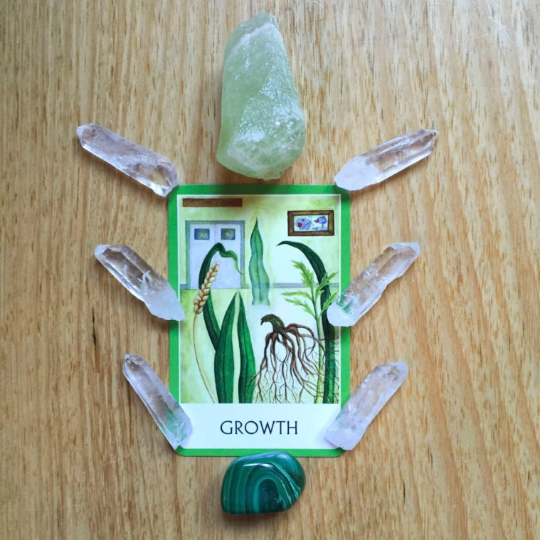 Card reading - growth