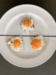 mini fried egg