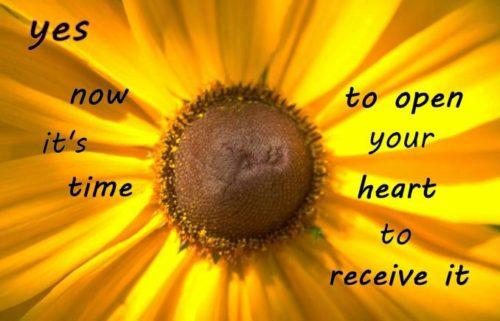 surprisinglives.net/time-open-heart/