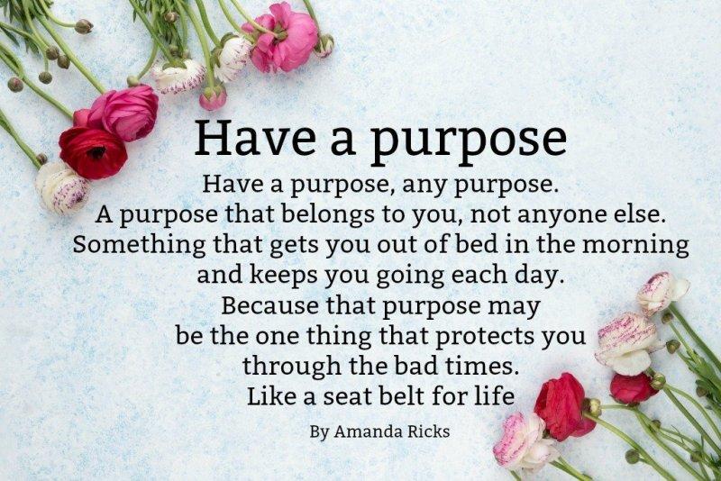 purpose quote by Amanda Ricks via surprisinglives.net