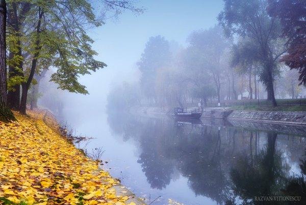 Ceata de noiembrie in Timisoara