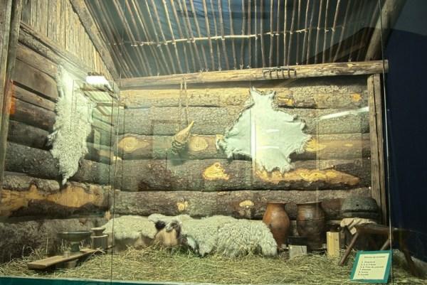 Muzeul de etnografie si arta populara din Orastie 2