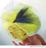 yellowhatweb