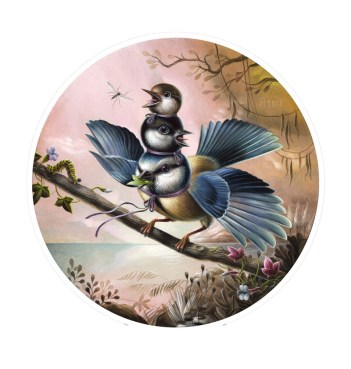 Fun Bird Three by Femke Hiemstra