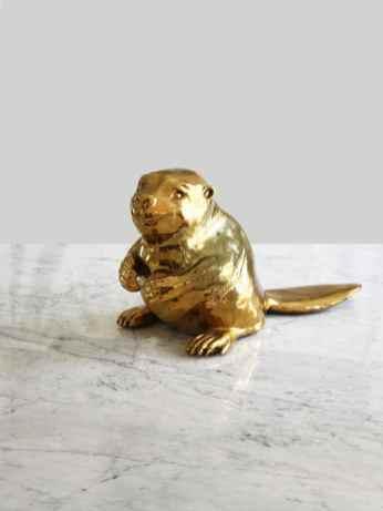Anne Faith Nicholls - Golden Beaver